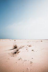 Natur Bilder - Thomas Röhler